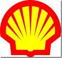 Shell замерла в удивлении из-за льдов в Арктие